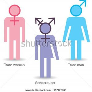 The travails of a Transfeminine woman.